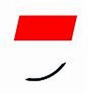 Logo / Wappen Solothurn